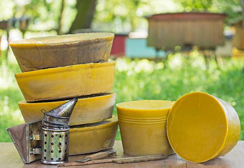 Poth Hille Organic Beeswax
